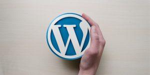 instalación Wordpress.org