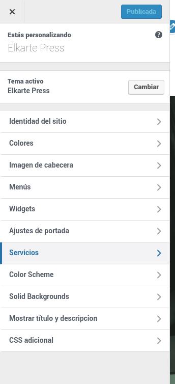 paneles theme options