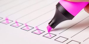checklist theme check